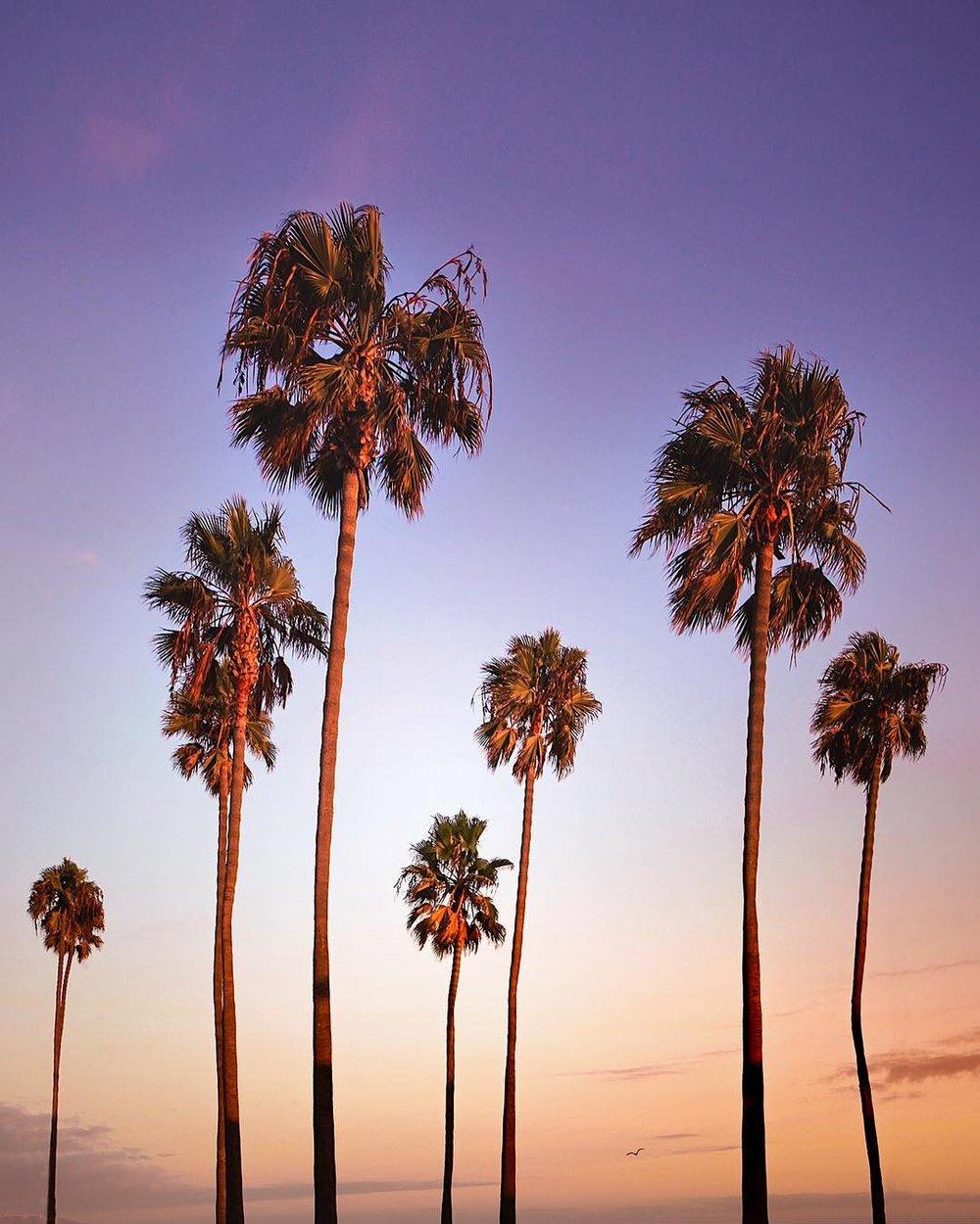 NomadicFare_California_10.jpg