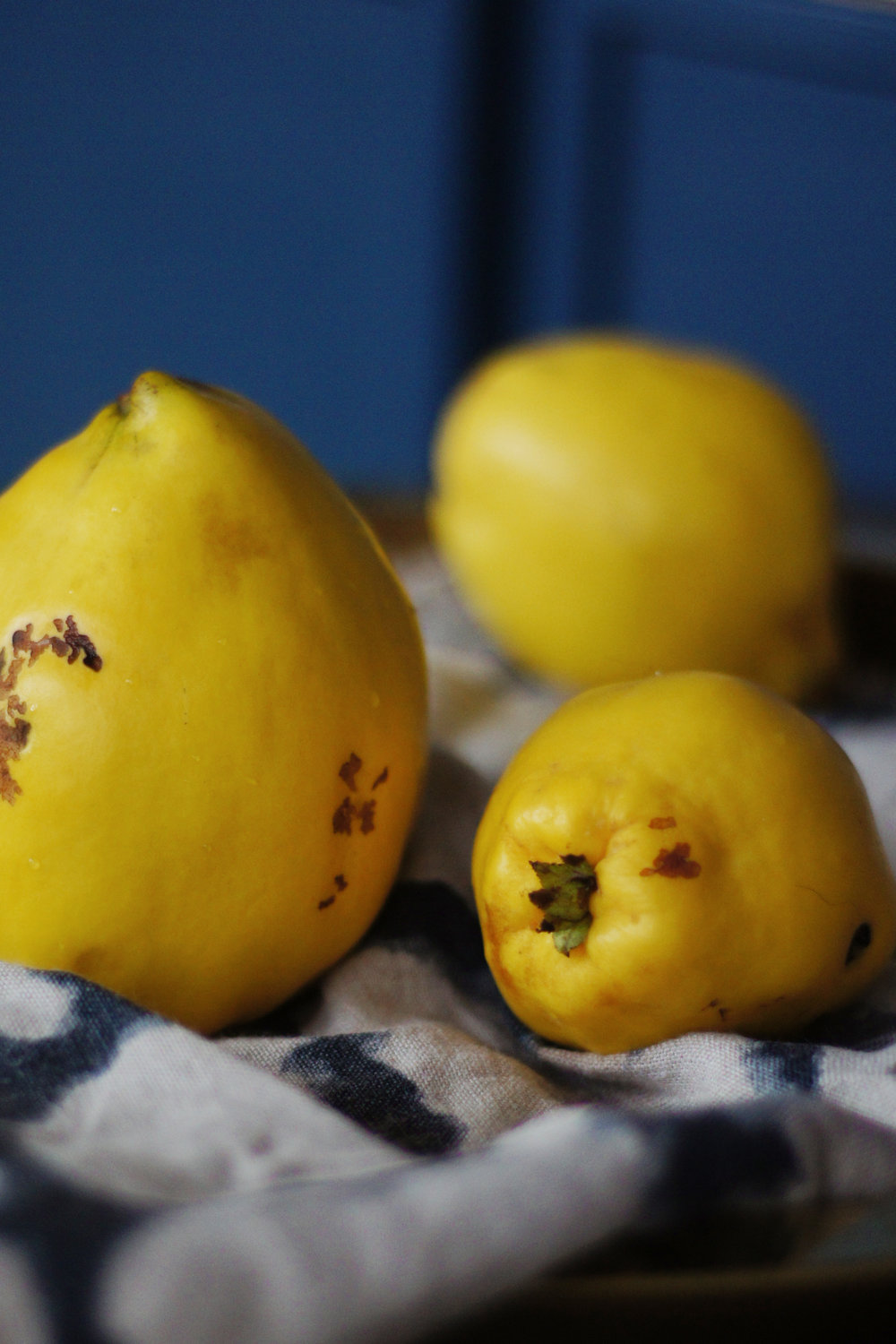quince_fruit_blog.jpg