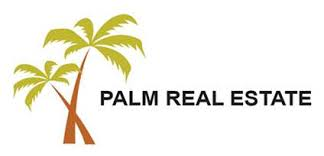 logo Palm Real Estate.jpg