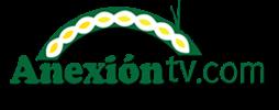 anexion tv logo.png