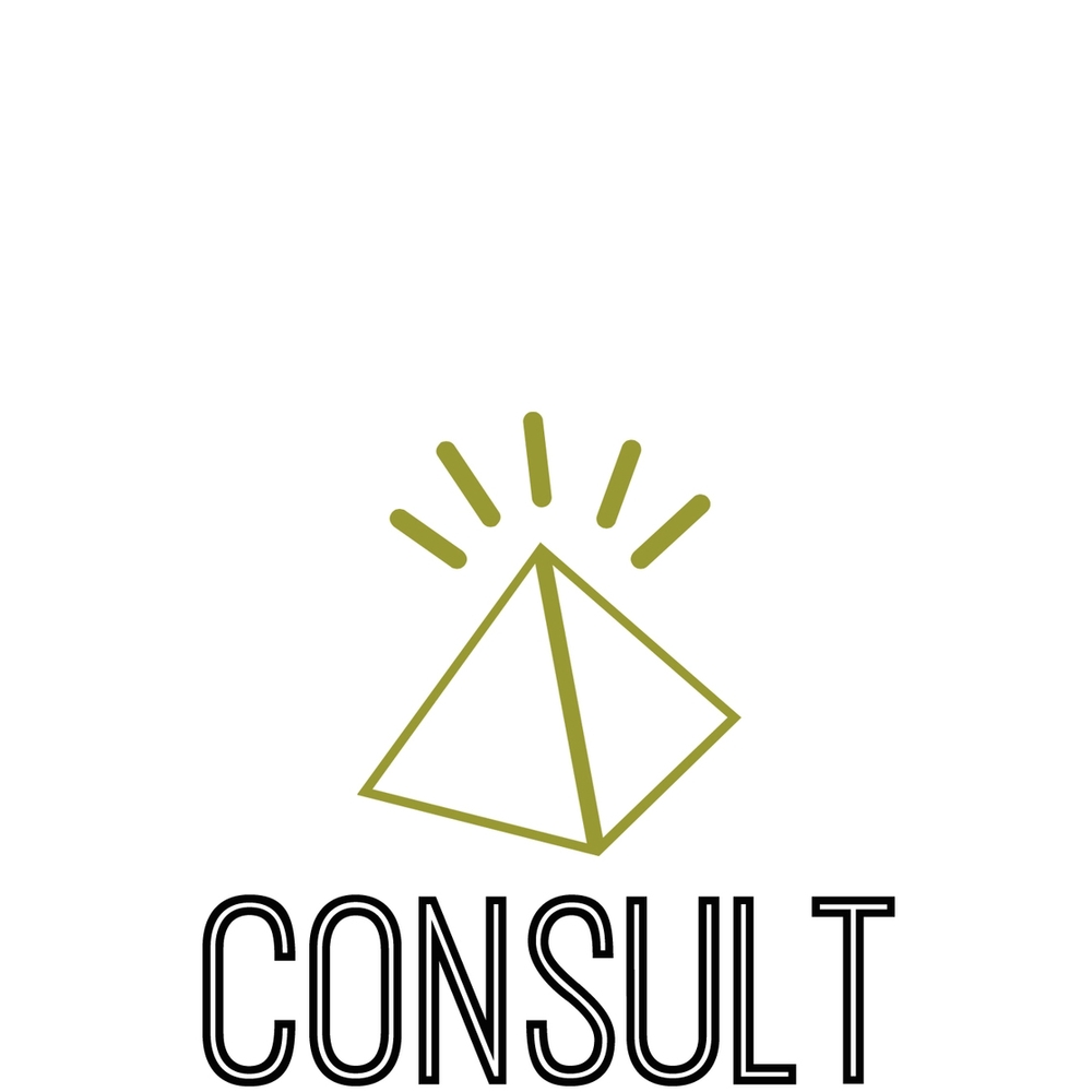 Consult Ostrich small.jpg