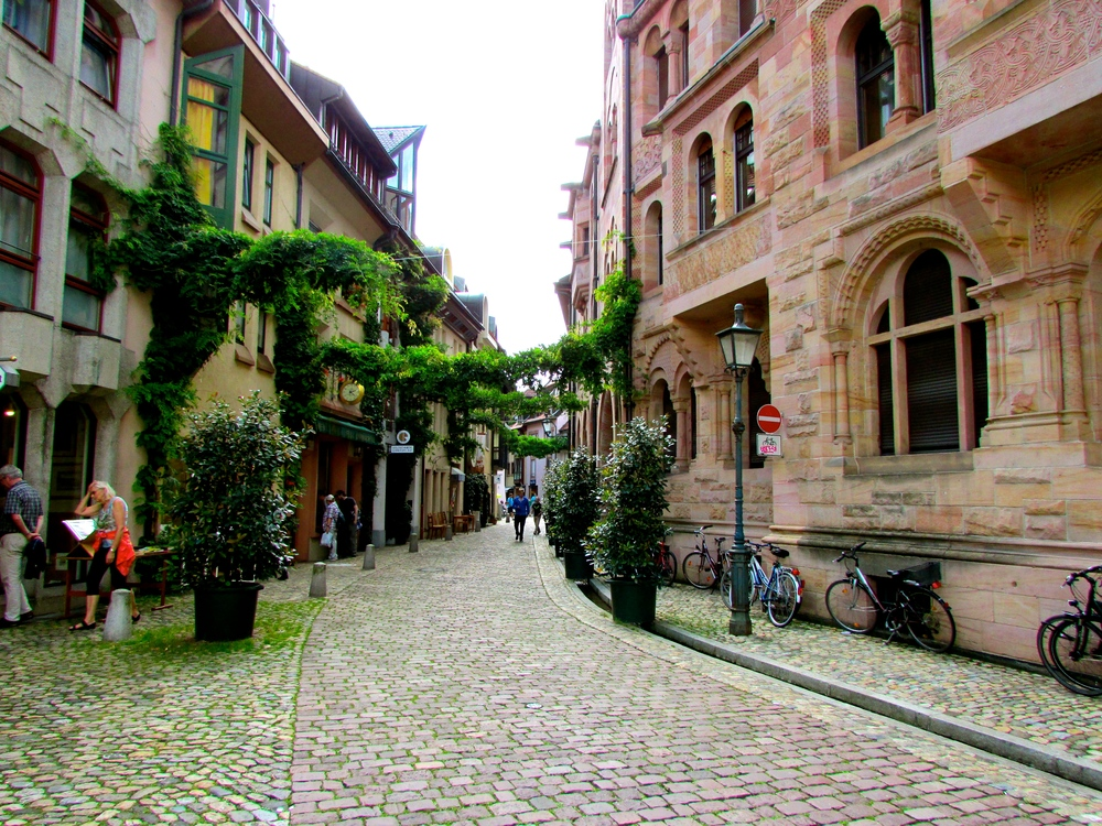 "This street in Freiburg gives the visitor a sense of how the town does not seek to distinguish ""nature"" as separate, but rather invites it to be a part of daily life."