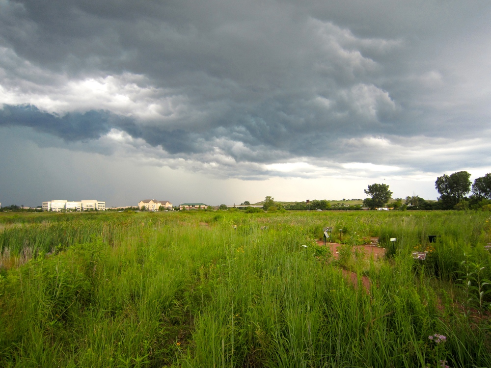 A storm rolls in over the 32 acre prairie.