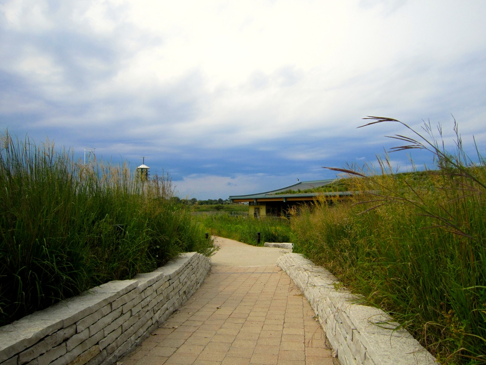 The entry path to the Tyner Center. The curved roof features solar panels on the left and a green roof on the right.