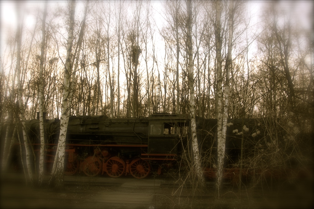 A 70 year old steam locomotive can be found on the park's grounds