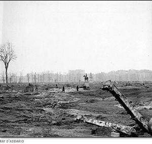 Tiergarten after WWII   Source