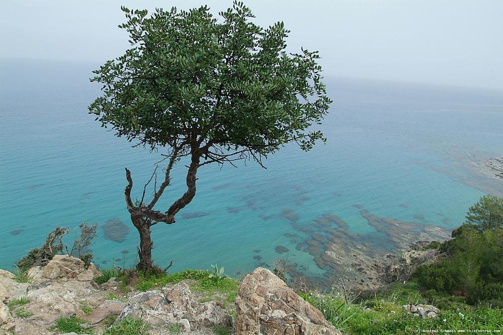 The Akamas coast of Cyprus.