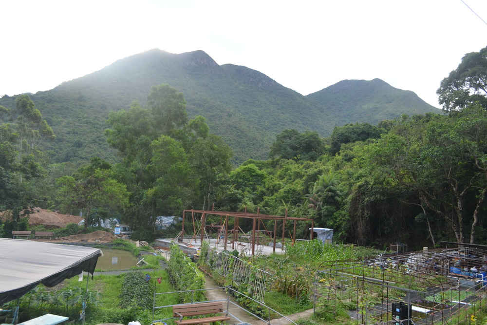 Photo: EFarm in Hok Tau Wai, New Territories, Hong Kong