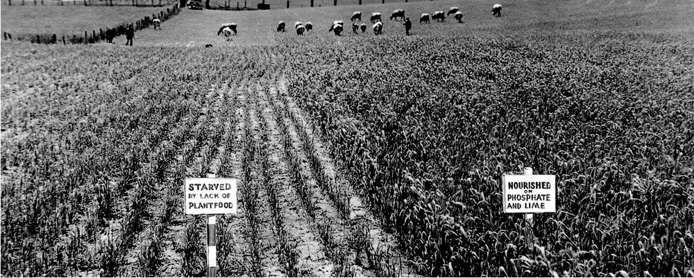 TVA's Pilot Sites: Fertilizers and the rise of agriculture in the American South