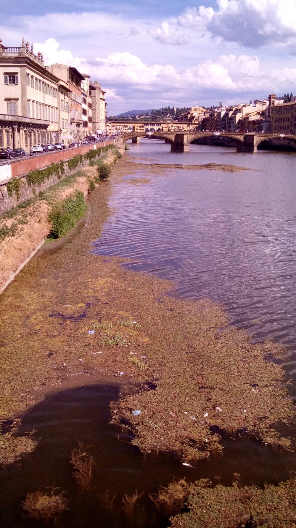 The Arno river in between Ponte alla Carraia and Ponte Vecchio. Photo by Luna Sarti.