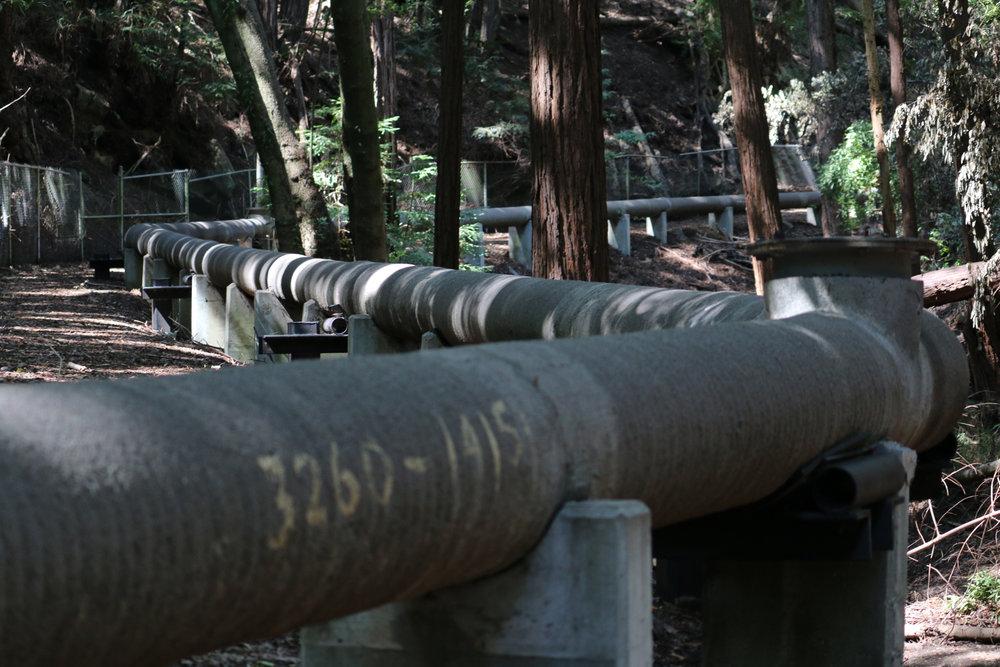 Wastewater pipes run through hidden gulches along the route of the Santa Cruz Wastewater Walk, 2015. (FICTILIS).