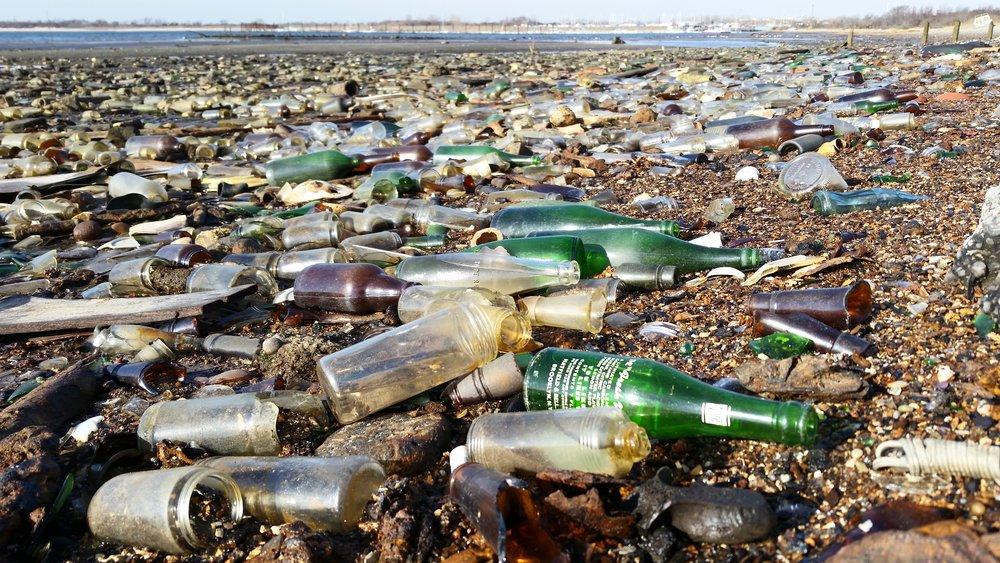A scene from Dead Horse Bay. Credit: Matt Green| Flickr