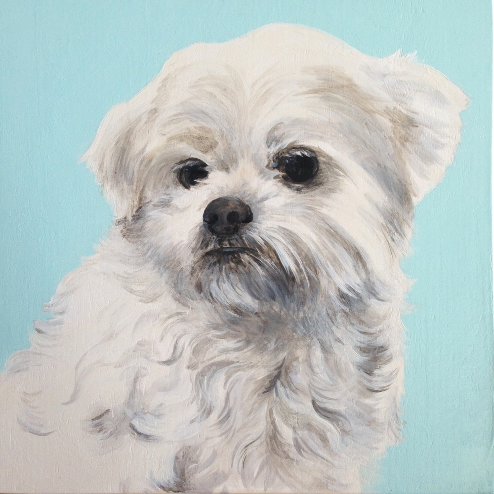 Sparky the Japanese Chin mix - painted for my Mum