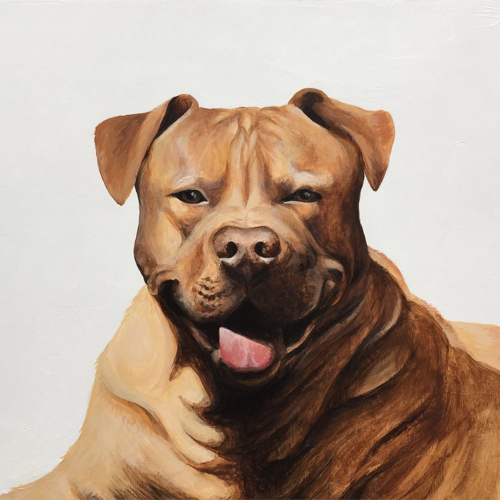 Nugget the Pittbull - commissioned by Tyler