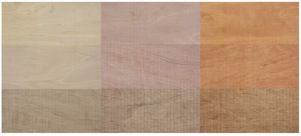 Eveline Kotai - Breathing Pattern #2, 2010, 120x270, acrylic on ply, available Art Collective WA