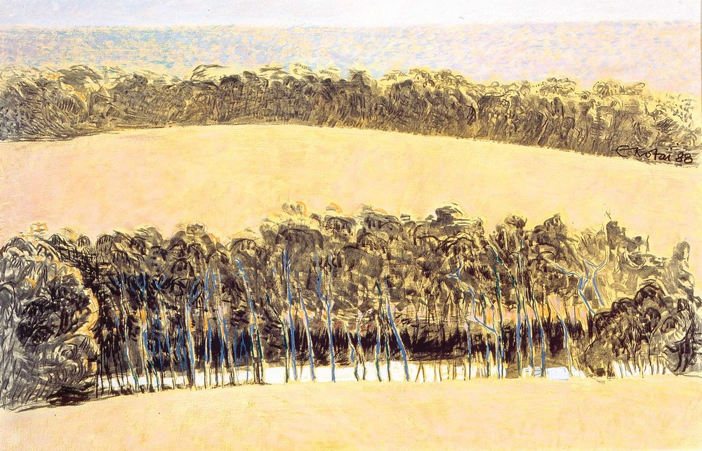 To Merribrook 1988, pastel and charcoal on Arches paper, 57 x 76cm. Collection of the Artist