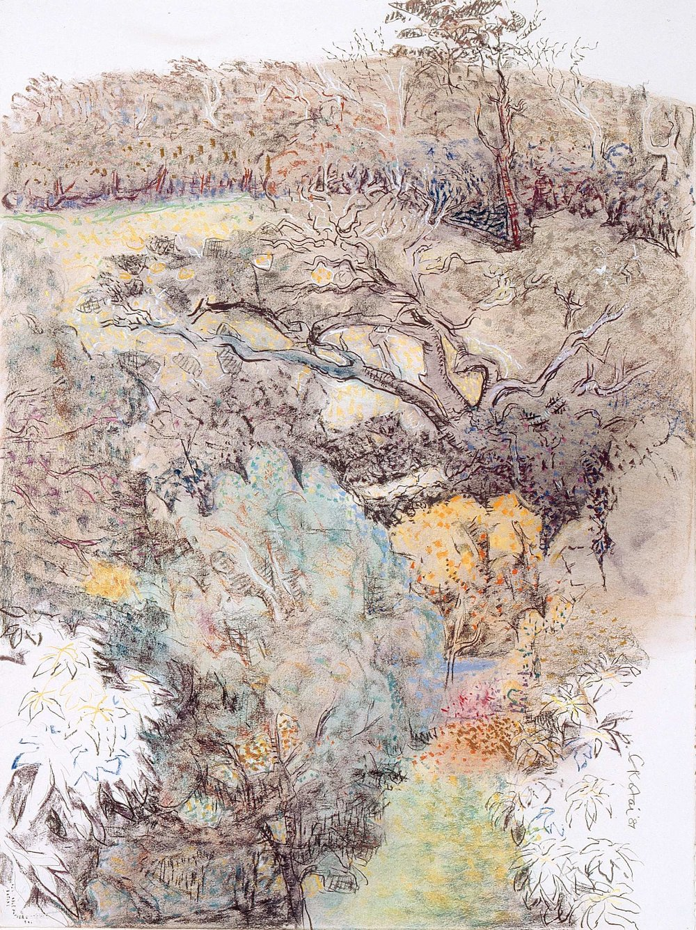 Chinese Hill 1987, pastel on Arches paper, 76 x 57cm. Private Collection
