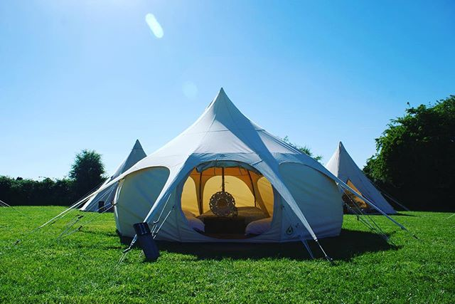 Beautiful sunshine and blue skies above us again. We happy and so are these guys . . . . #collectmemoriesnotthings #teepeeden #lovelotusbelle #loveteepee #lotusbelle #boutiquecamping #glamping #camping #bristol #oxford #tentrental #glampinghire #bristolcamping #oxfordcamping #festivalglamping #festivaltenthire #weddingglamping