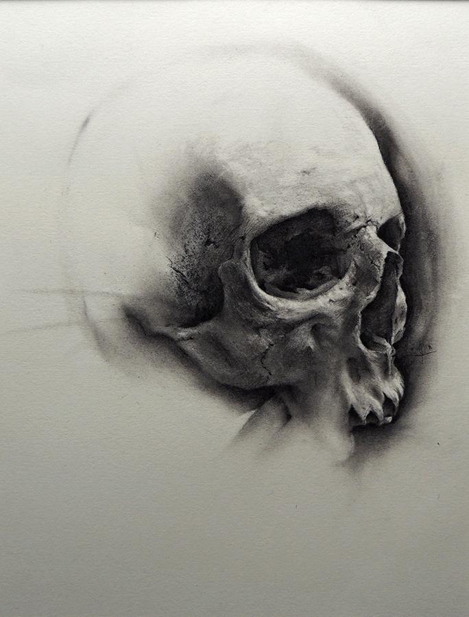 SkullStudy.jpg