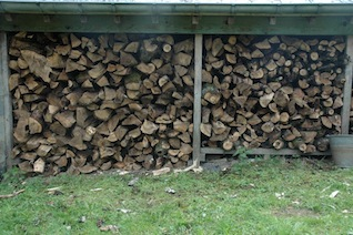 gj_notenboom_brandhout.jpg