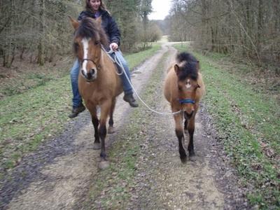 www_paardrijden_Mylena kopie.jpg