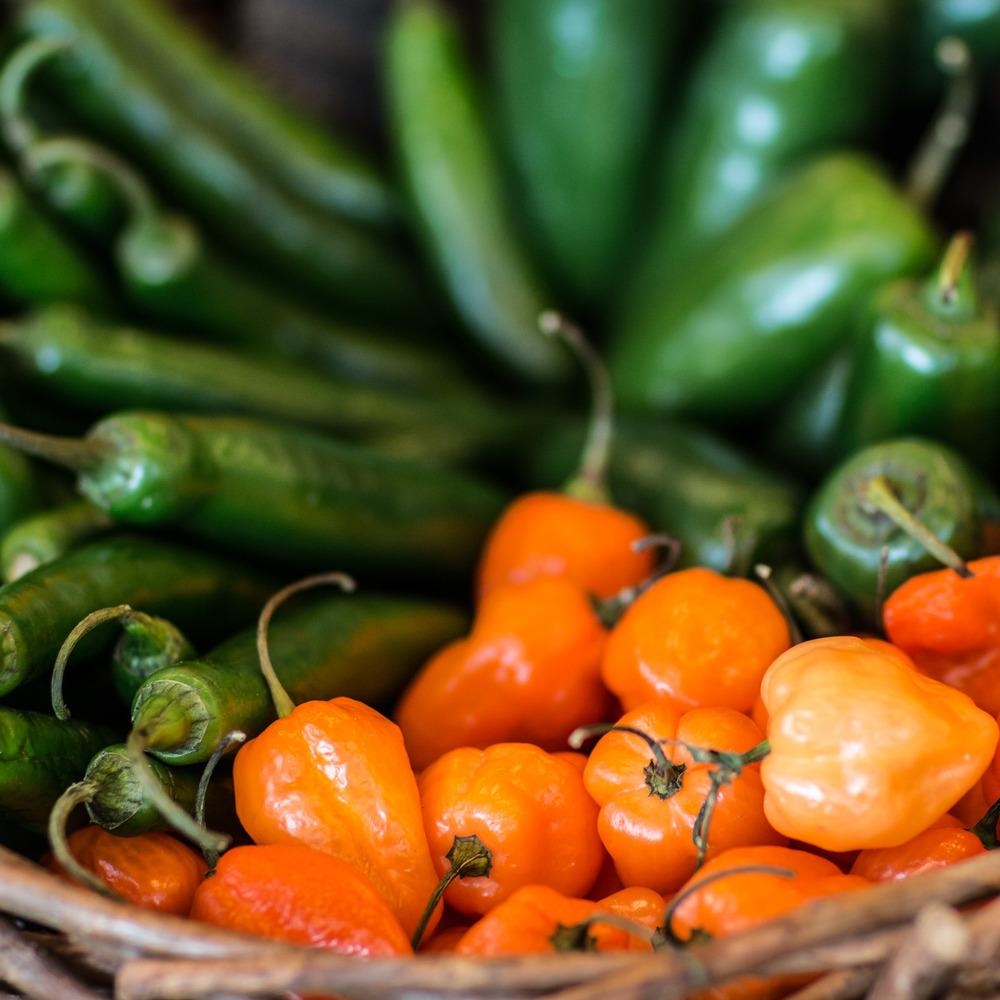 peppers-jalapenos-habanero.jpg