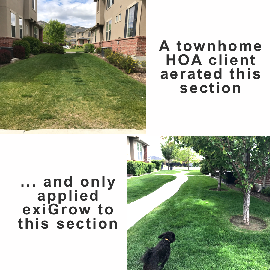 Only weeks until awesome lawn - exiGrow restores healthy soil to grow thick, lush lawn. Repair patchy, dull, matted grass and avoid water pooling and running down the gutter. Water and fertilizer can't help your lawn if they can't be absorbed into hardened soil. Reduce your water and fertilizer use up to 50%.