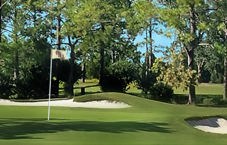 Seminole GC - Heavy accumulation of mineral salts killed the fairways and looked like snow. One application per week over 3 weeks helped to dramatically improve color and coverage.