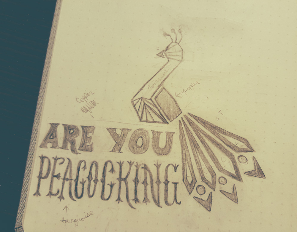 Peacock sketch with typography - Lauren Hodges