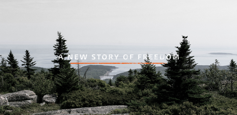 Build Community:   Join the writing team to tell a new story of freedom from the inside of American Politics.