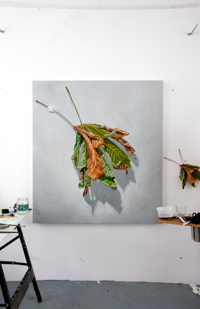 """Two Years Chestnut Leaves"""