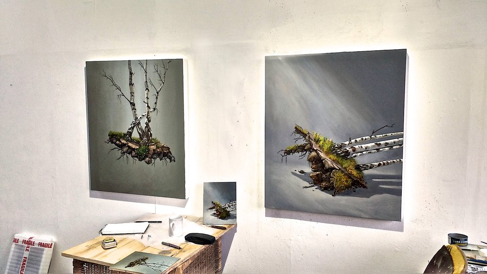Studio June 2017 new works: Top lit Birches left and Fallen Tree.