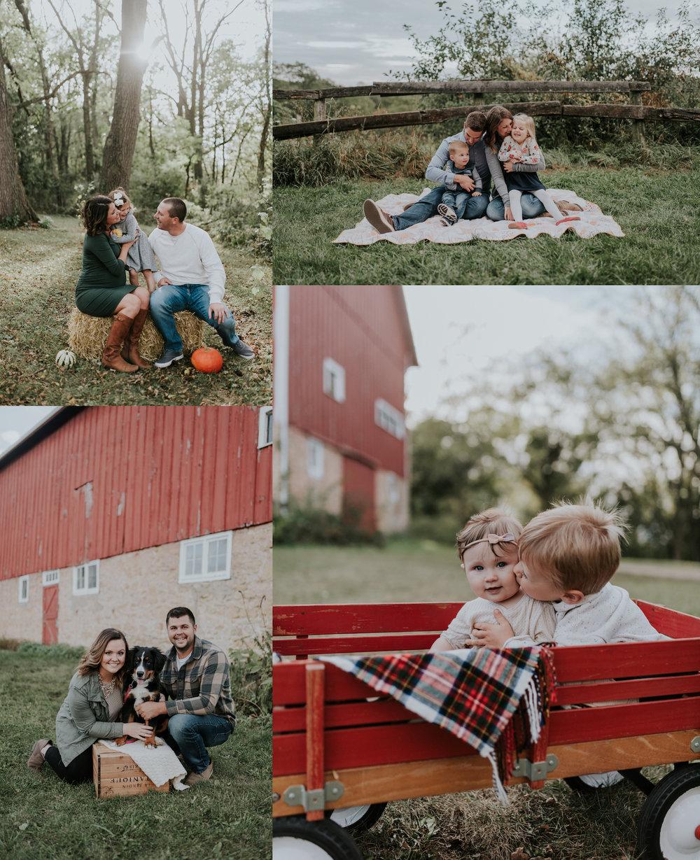 minis collage.jpg