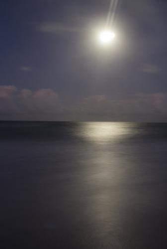luminesce.jpg