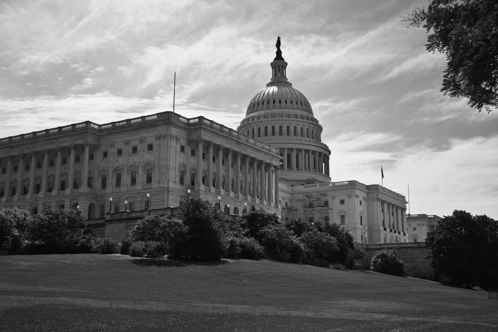 WashingtonDC15BW.jpg