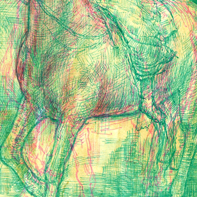 horse_detail_2.jpg