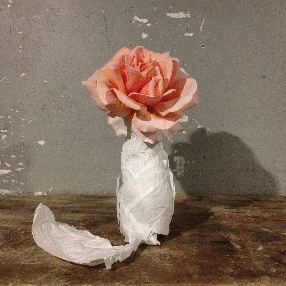 """Rose in a Bottle"", 2013"
