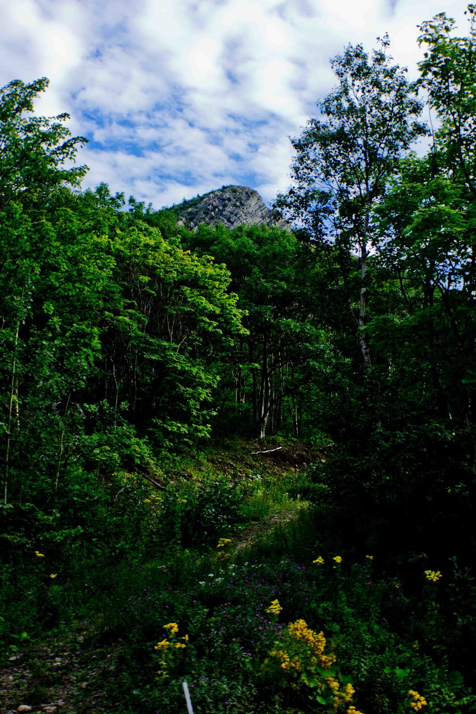Cabot Trail  Part 12