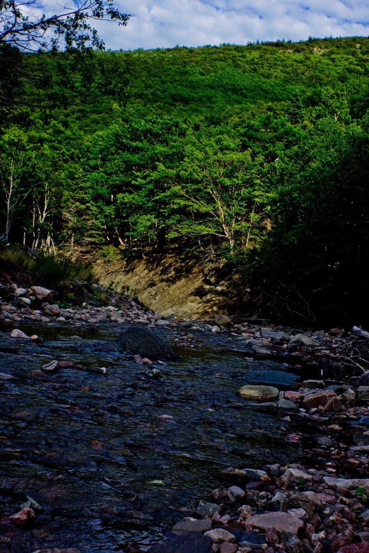 Cabot Trail Nova Part 13