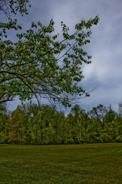 Buell lake County Park-5.jpg