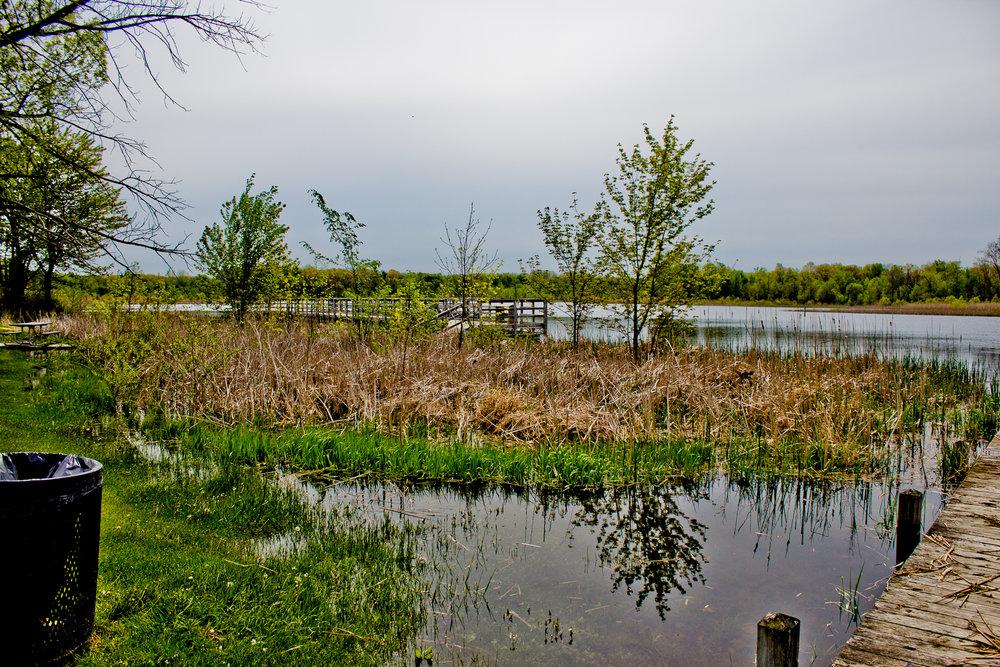 Buell lake County Park-13.jpg