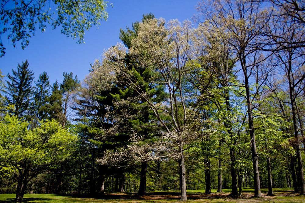 Richfield County Parks-5.jpg