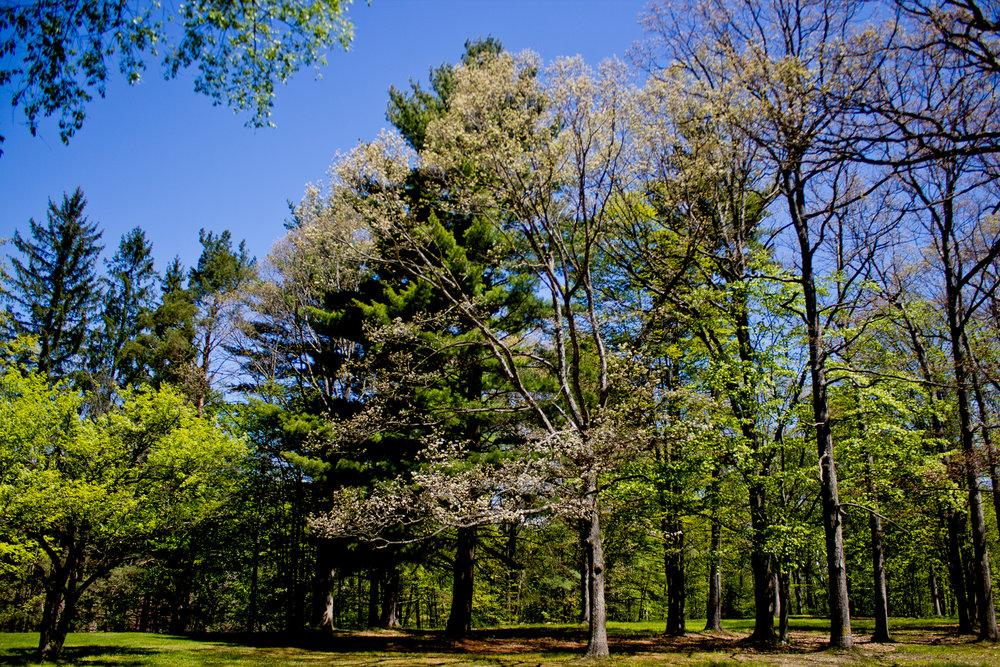 Richfield County Parks-6.jpg