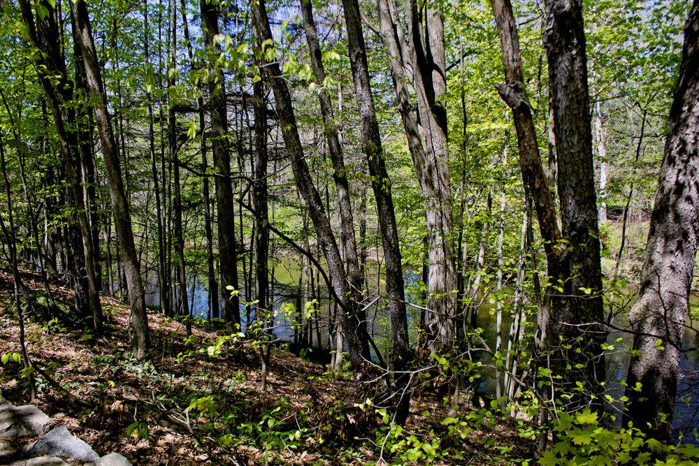 Richfield County Parks-10.jpg