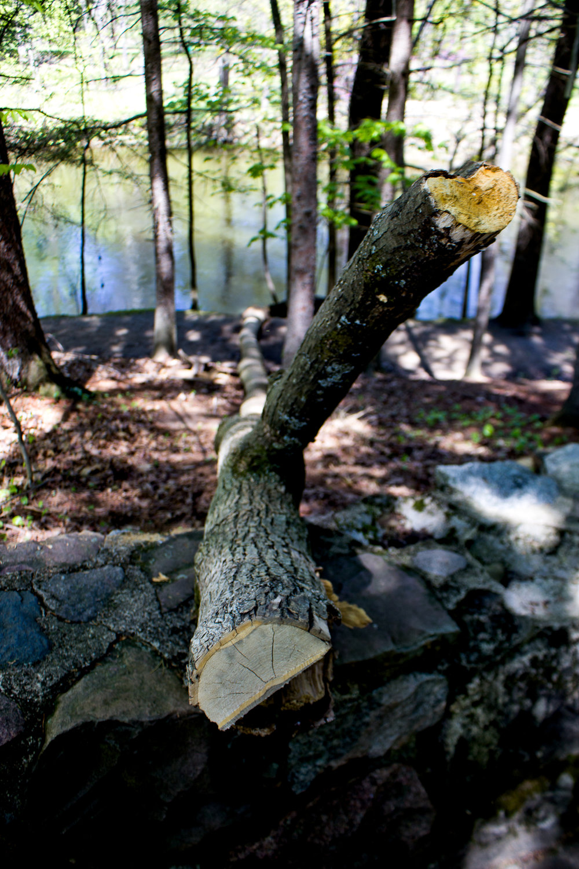Richfield County Parks-15.jpg