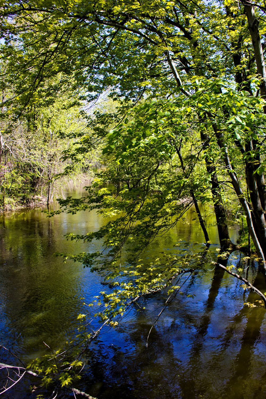 Richfield County Parks-21.jpg