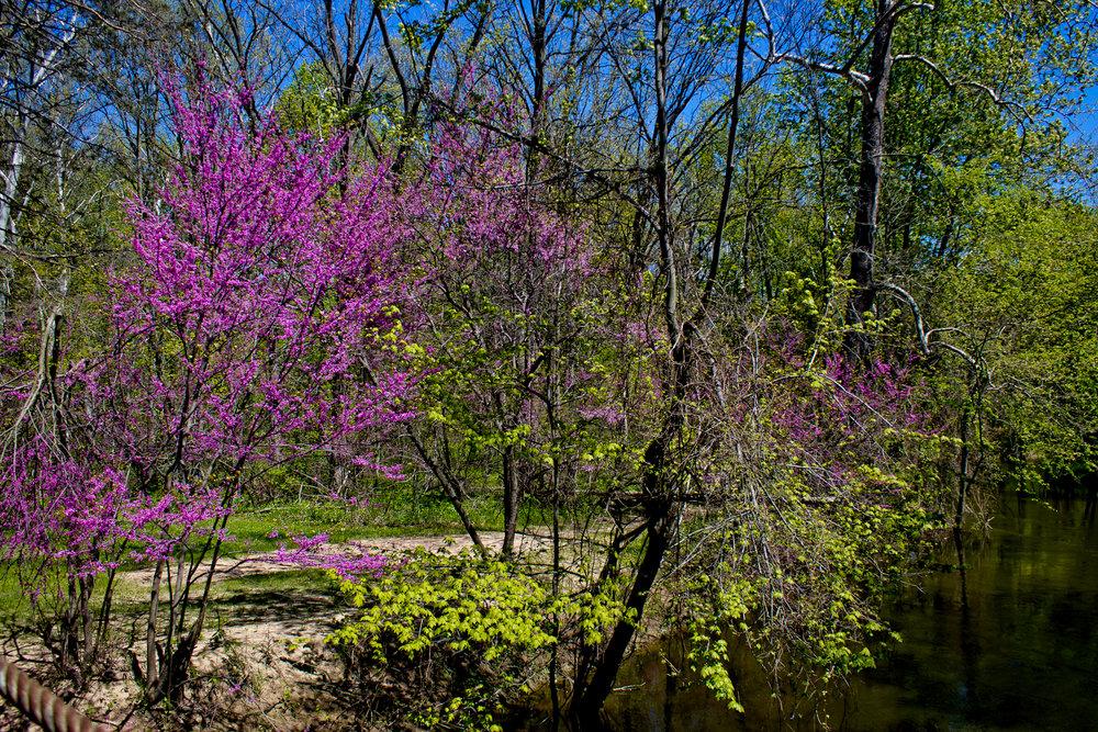 Richfield County Parks-24.jpg