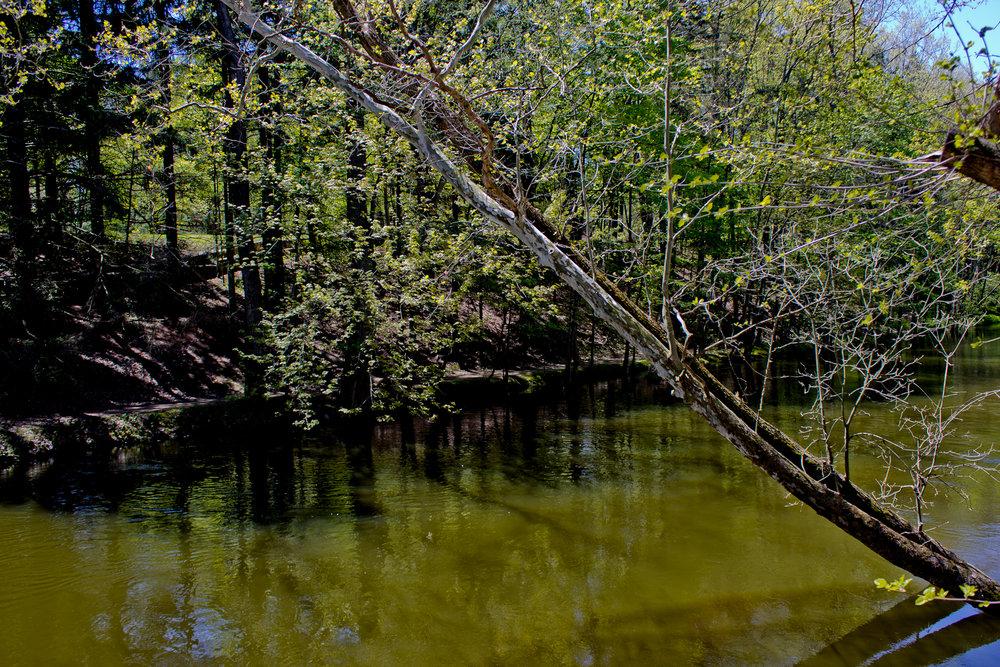 Richfield County Parks-26.jpg