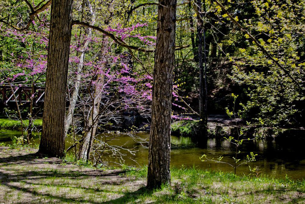 Richfield County Parks-31.jpg