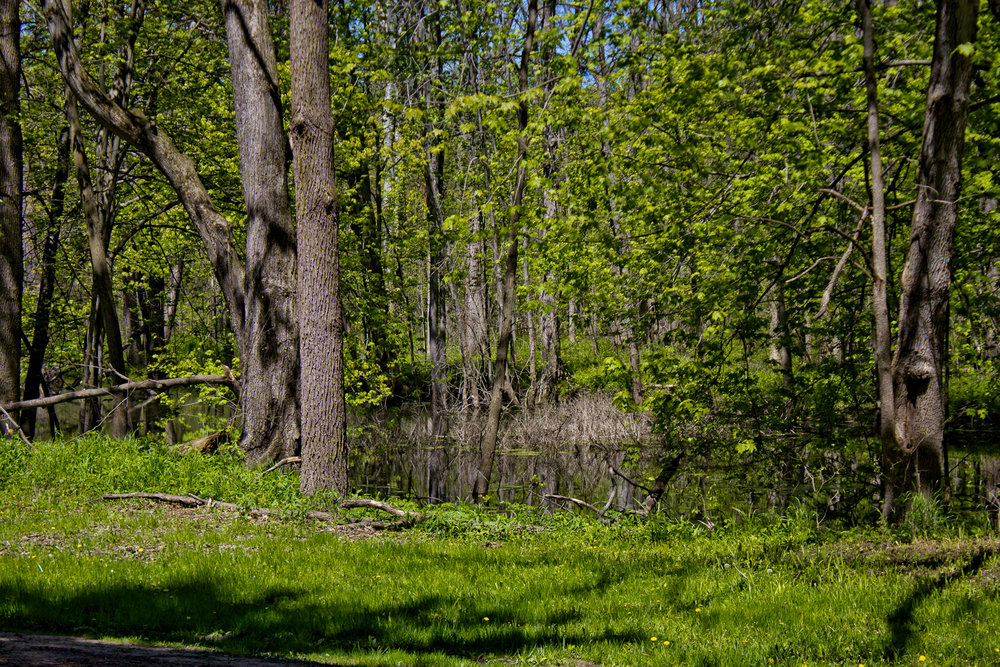 Richfield County Parks-33.jpg